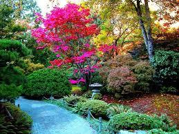 imagenes de jardines japones contemplar un jardín japones blogdepelusita
