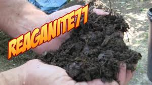 Composting Pictures by Grass To Garden Soil In 14 Days Drunken Composting Using Beer