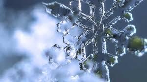 pretty little snowflakes jan 2013 macro photography nikon