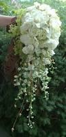 600 best the bouquet whites ivories creams images on