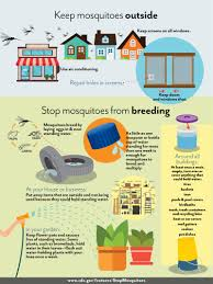 city of fort lauderdale fl mosquito control and zika prevention