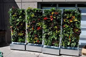 fancy herb garden wall inspiration best garden ideas and