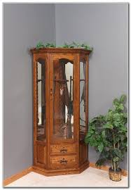 wooden gun cabinet with etched glass cabinet home decorating