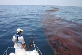 gulf or bp oil spill