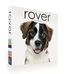 dog coffee table books rover woof edition coffee table book of dogs sold out roverworks