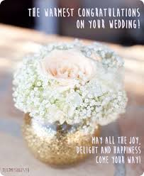 wedding wishes related to food 70 wedding wishes quotes messages with images