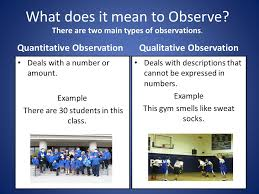 observing like a scientist ppt