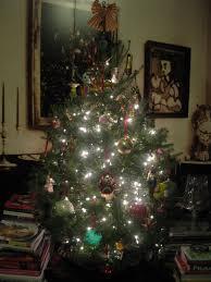 i want to eat my tree hungry sofia