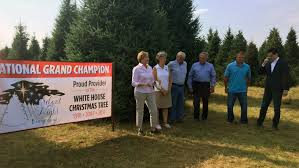 white house christmas tree selected from shawano county wisc wluk