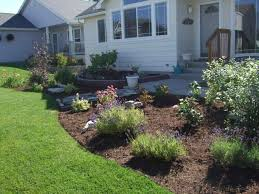 yard landscaping drought tolerant plants awesome landscaping ideas