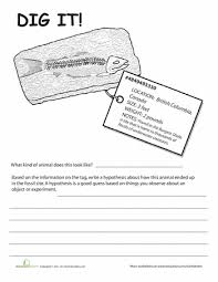 fossils worksheets dig it 2 fossil fossils and worksheets