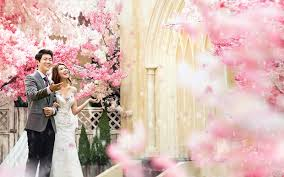 wedding wishes korean 3 000 usd korean pre wedding photography package indoor roof