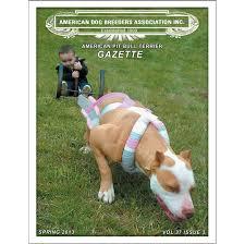 volume 37 issue 3 american pit bull terrier gazette
