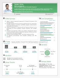 Resume Templates For Accountants Visual Resume Samples Visual Cv Visual Curriculum Vitae Format