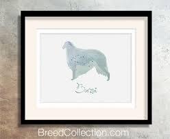 afghan hound harga 70 best dog notecards u0026 paper images on pinterest dachshunds