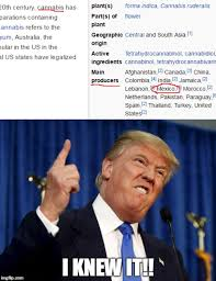 Wikipedia Meme - image tagged in donald trump trump mexicans wikipedia imgflip