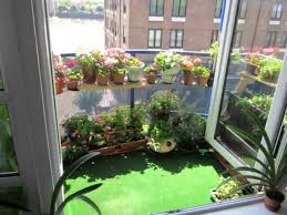 download small indoor garden ideas solidaria garden