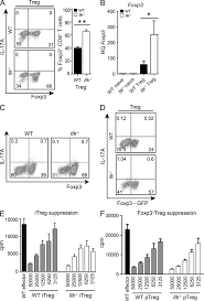 itk mediated integration of t cell receptor and cytokine signaling