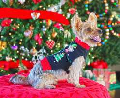 ugly christmas sweater ideas for dogs