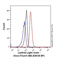 difference between kappa and lambda light chains anti lambda light chain antibody epr5367 62 recombinant ab124719
