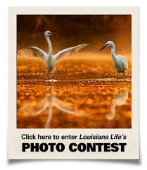 Louisiana travel tags images Louisiana lifestyles travel destinations and culture jpg