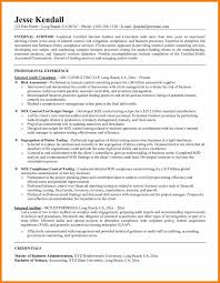 it internal audit resume samples what is a good job objective for