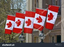 five canada national flags hanging embassy stock photo 142581175