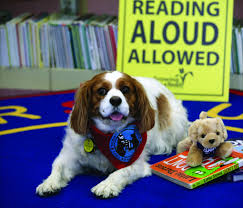 how reading aloud to therapy dogs can help struggling kids