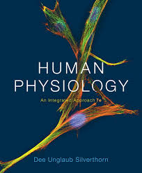 Human Anatomy And Physiology Marieb 7th Edition Silverthorn Human Physiology An Integrated Approach 7th Edition