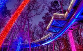 Botanical Gardens Atlanta Lights Garden Of Lights Atlanta Webzine Co
