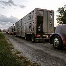 butler trucking home facebook