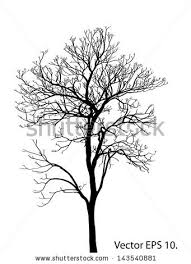 fall tree line stock images royalty free images u0026 vectors