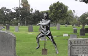 Funeral Meme - funeral gif find share on giphy
