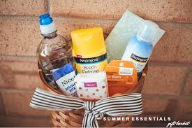 Best Friend Gift Basket Summer Essentials Gift Basket Dearest Lou