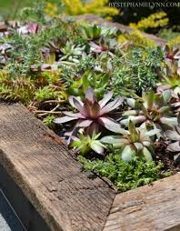 Garden Wall Planter by Succulent Wall Planter How To Build A Vertical Garden