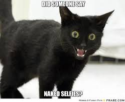 Naked Meme - did someone say naked selfies cat from r aww adviceanimals
