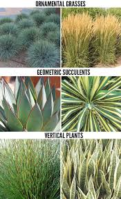Modern Front Yard Desert Landscaping With Palm Tree And Best 25 Modern Landscaping Ideas On Pinterest Modern Backyard
