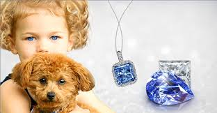 ashes into diamonds pets immortalized in diamonds made of cremated ashes extravaganzi