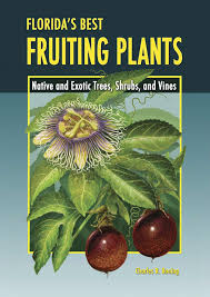 online native plants florida u0027s best fruiting plants native and exotic trees shrubs