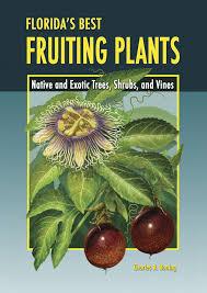 florida native plants florida u0027s best fruiting plants native and exotic trees shrubs