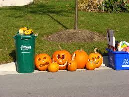 file pumpkins after halloween jpg wikimedia commons