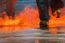 report paul walker killed due to car crash u0026 burns
