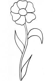 coloriage d u0027une fleur à longue tige tête à modeler