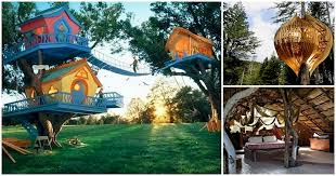 cool tree house 12 awesome tree houses to your inner child go nuts