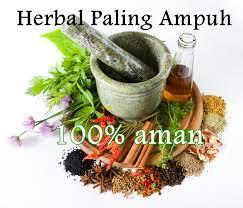 obat kuat pria herbal perkasa tahan di atas ranjang manjur