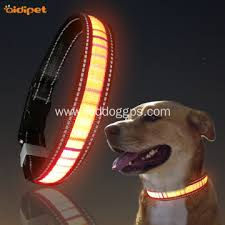 Rechargeable Glow Up Night Safety Led Dog Collar China Manufacturer