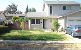 small modern front yard landscaping ideas no grass with plants
