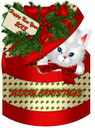 502 best christmas cats board 2 closed images on pinterest