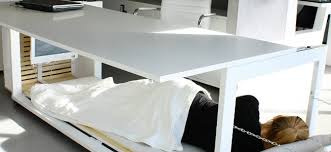 Office Desk Bed Meet The Desk That Transforms Into A Bed Thegrindstone