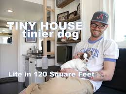 tiny house tinier dog living in a 120 square feet small home